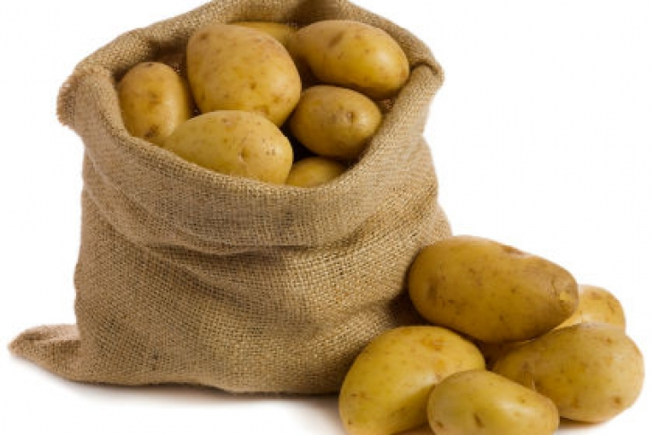Өткөн жылга салыштырганда быйыл 5,2 миң гектарга аз картошка себилди