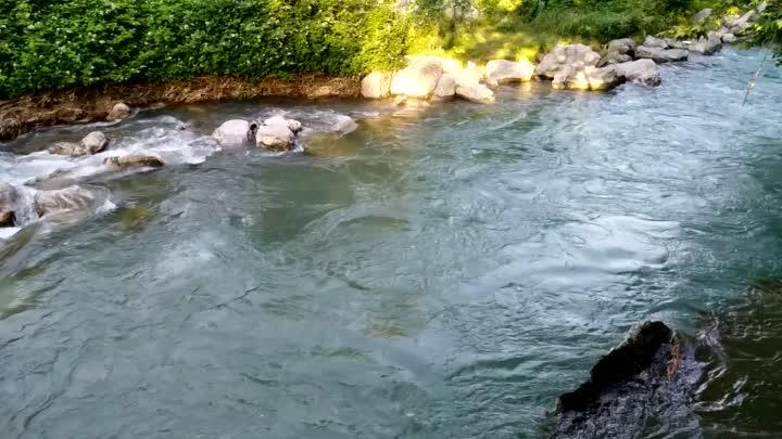4 адам бараткан унаа Ак-Буура дарыясына кулап, экөөнүн сөөгү табылды