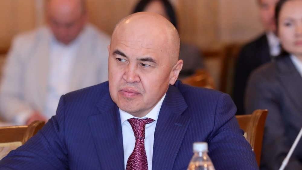 Сулайманов: Мамлекет элди жумуш менен камсыз кыла албаган соң патент талап кылбасын