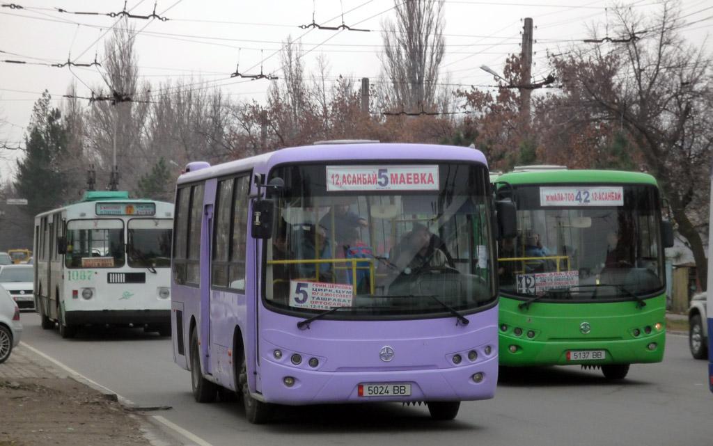 Бишкекте автобустун айдоочулары жол эрежелери боюнча тесттен өтүшүүдө