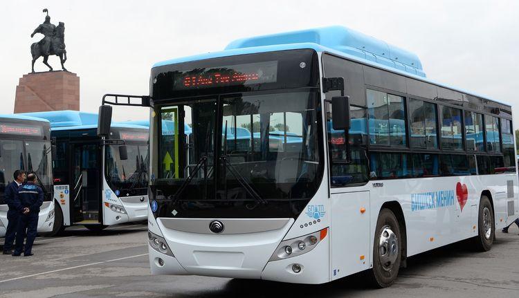 Бишкекке көп орундуу 520 жаңы автобус келет