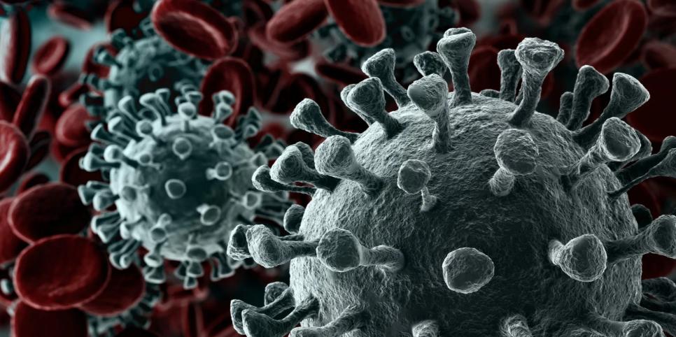 28-апрель. Кыргызстанда коронавирусту жуктурган дагы 13 жаңы учур катталды