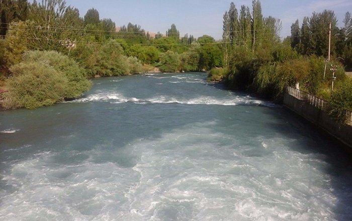 Ошто индиялык студент Ак-Буура дарыясына агып, каза болду