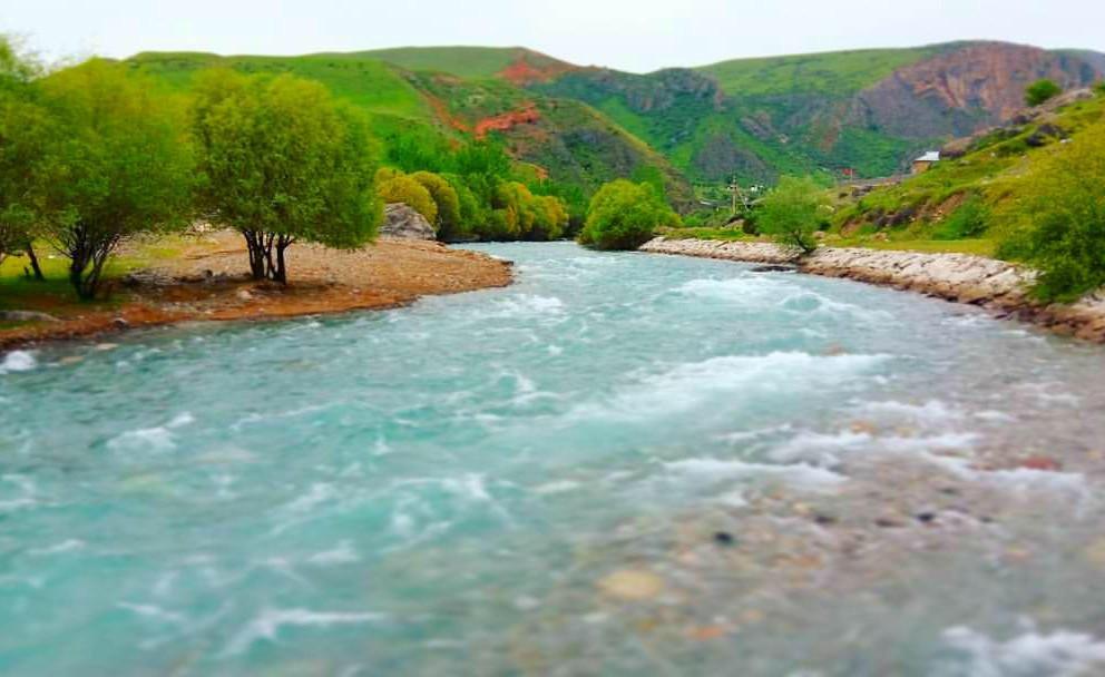 Ак-Буура дарыясынын жээгинде 31 жаштагы адамдын жансыз денеси табылды