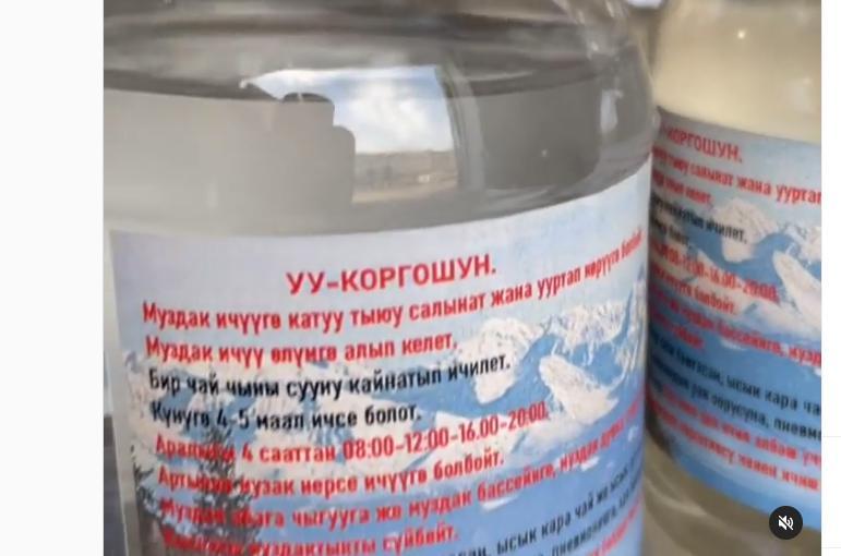 «Уу-коргошун» коронавирустан айыктырабы? — видео