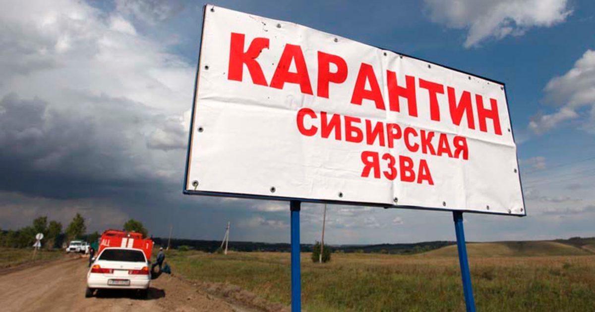 В Аксыйском районе село  закрыли на карантин из-за сибирской язвы